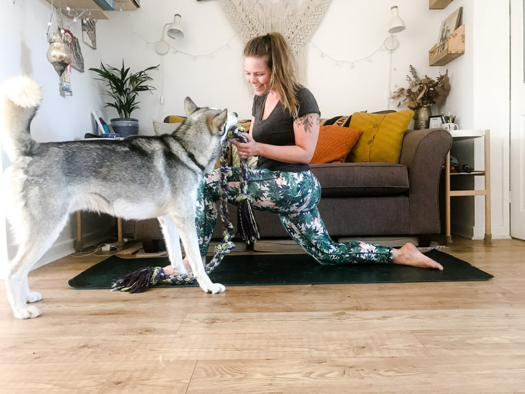 yoga with dogs 1 How to take your own yoga photos with a phone